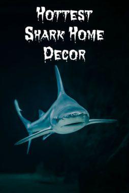 Shark Home Decor