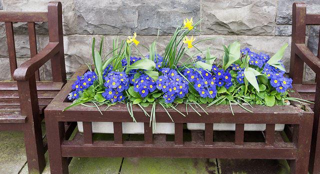 How To Plant A Memorial Garden