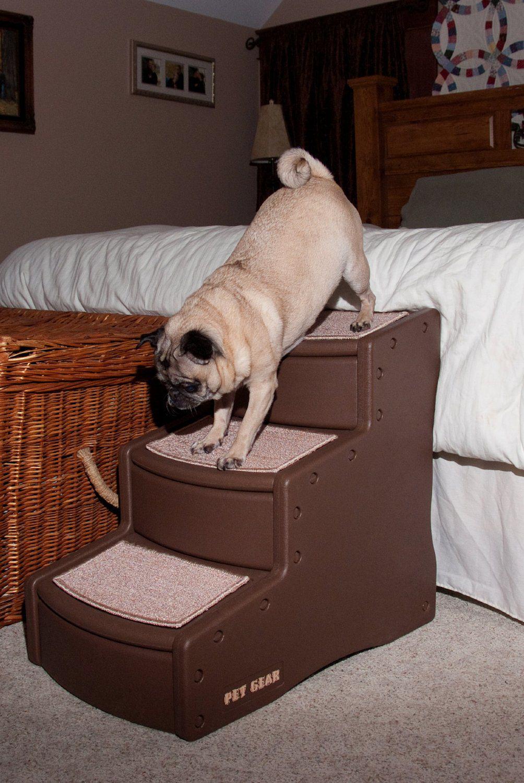 Dog Stairs
