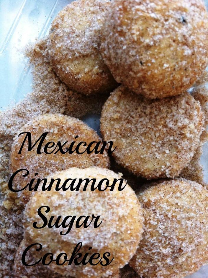Mexican Cinnamon Sugar Cookies