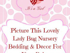 Lady Bug Nursery Bedding